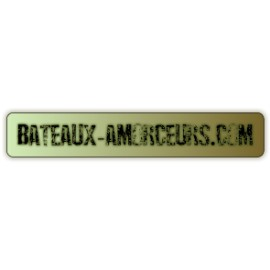 Réparation tackle évolution + X 2 batteries 5ah
