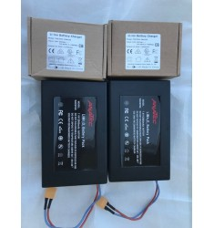 X 2 batteries lithium 12 000 mah anatec + X 2 chargeurs