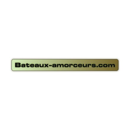 Modification catamaran brushless R X 2 batteries 10ah + chargeur + switch écho et lumière