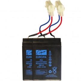 Batterie 6V pour pac boat et carp tracker
